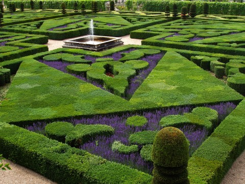 French_Formal_Garden_in_Loire_Valley