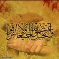 أحمد العمر