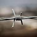 150320_EYE_ BarbedWire1.jpg.CROP.original-original