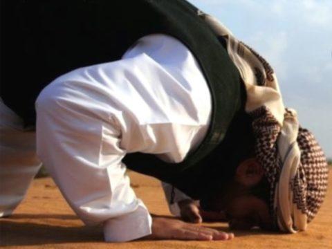 المهاجر إلى الله - الجبهة السلفية - مصطفى البدري