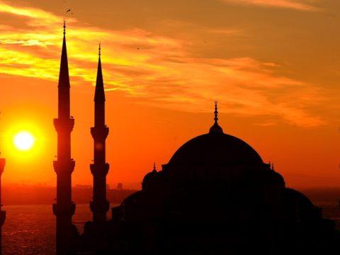 الحضارة الإسلامية - الجبهة السلفية - محمد علي المصري