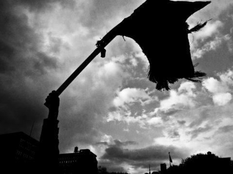 مبادارات لحل الأزمة المصرية - القوى السياسية - الجبهة السلفية - احمد مولانا