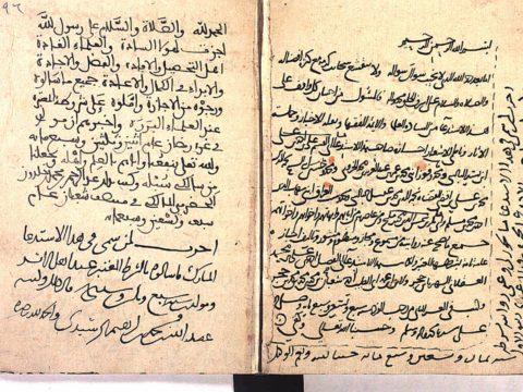 محمد علي المصري - الجبهة السلفية - الخلاف بين العلمي والعملي