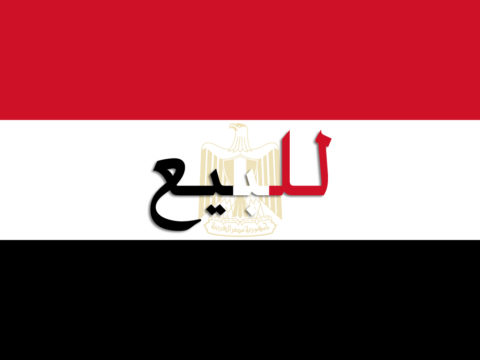 مصر للبيع - الانقلاب العسكري في مصر - الانهيار الاقتصادي في مصر - الجبهة السلفية - محمد علي المصري