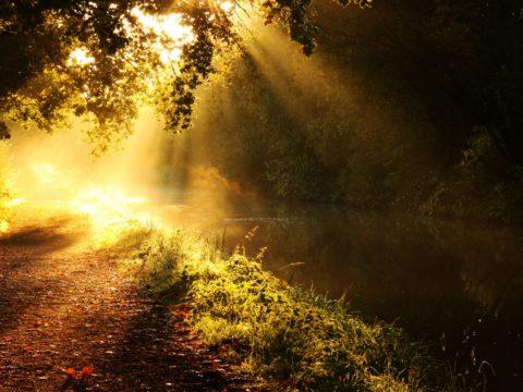 معرفة الله - الحق والباطل - الغفلة - الإيمان - المؤمنون - الغافلون - الجبهة السلفية - أشرف عبد المنعم