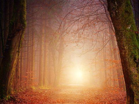 الرؤيا - الرؤيا الصالحة - المبشرات - الرؤى - النبوة - الجبهة السلفية - خالد سعيد
