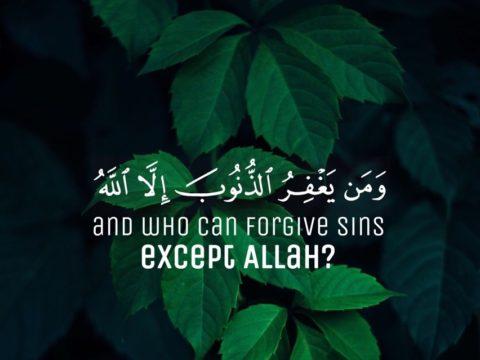 ومن يغفر الذنوب إلا الله - والذين إذا فعلوا فاحشة أو ظلموا أنفسهم ذكروا الله - سيد قطب - في الظلال - الجبهة السلفية