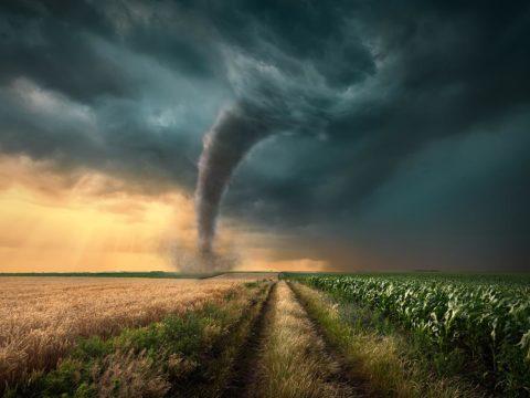 الكوارث - المصائب - المحن - الوباء - البتلاء - كورونا - التوكل على الله - الأخذ بالأسباب - الجبهة السلفية - محمد بن شاكر الشريف