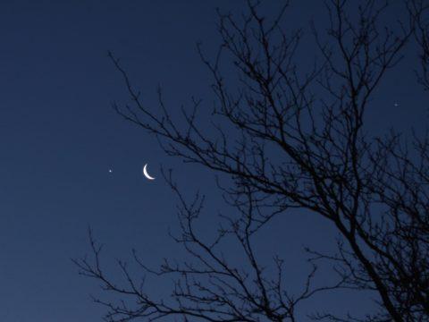 ليلة القدر - ليلة مباركة - الليلة المباركة - رمضان - تنزيل القرآن- الجبهة السلفية - سيد قطب - في ظلال القرآن