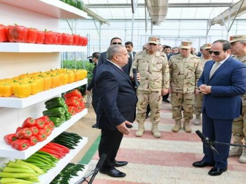 مصر - اثيوبيا - سد النهضة - الوطنية - القومية - السيسي - الجبهة السلفية - خالد سعيد