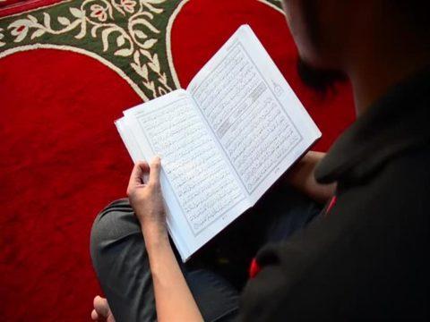 منهج القرآن - هداية القرآن - منهج الإسلام - في ظلال القرآن - الجبهة السلفية - سيد قطب