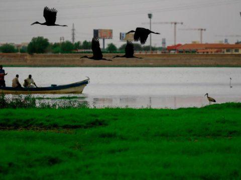 نهر النيل - أزمة سد النهضة - أزمة مصر وأثيوبيا - السودان - قناة جونجلي - الجبهة السلفية - خالد سعيد - مياه الأمطار